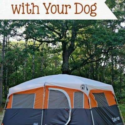 Family Camping with Your Dog