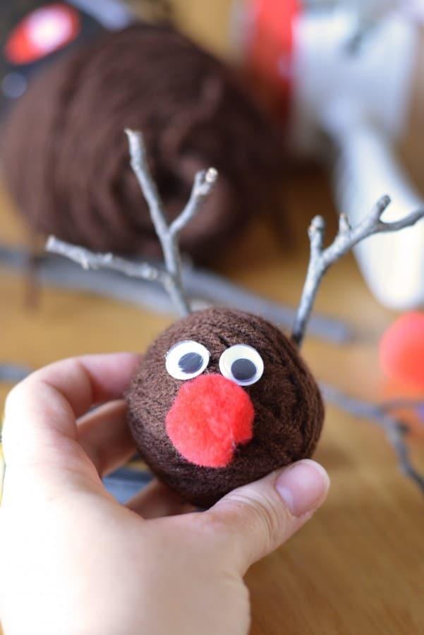 Reindeer6