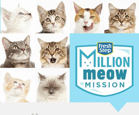 million meow