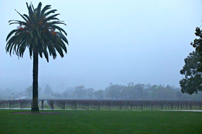 chateaustjean rain view