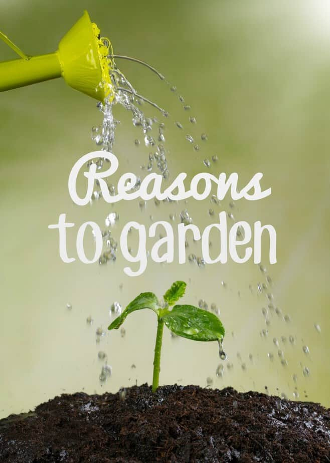 8 Reasons to Garden- This Mama Loves