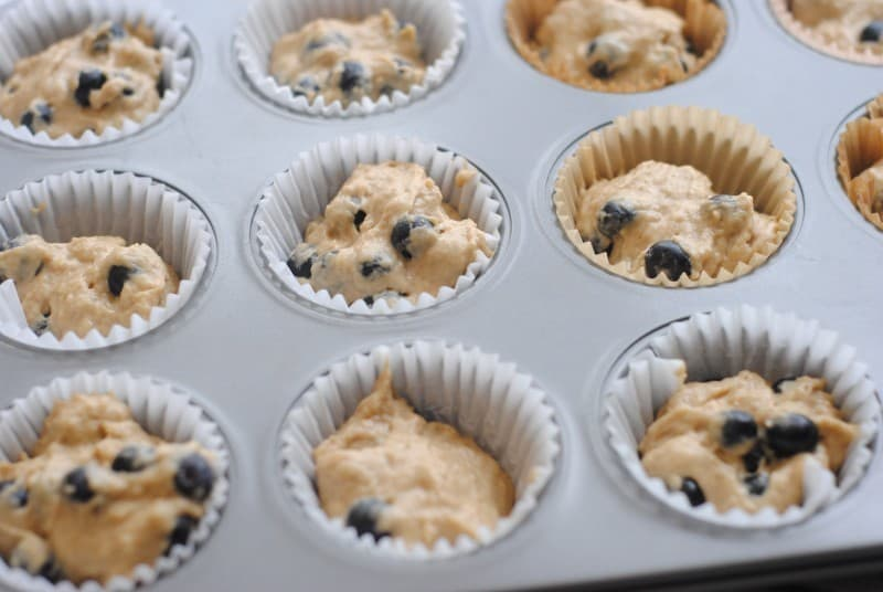blueberry coffee muffins tins