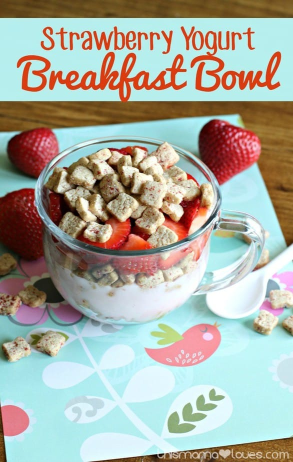 Strawberry Yogurt Breakfast Bowl / This Mama Loves