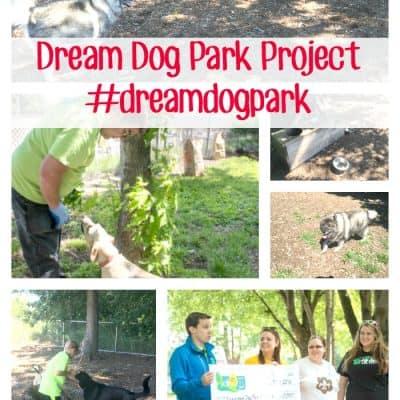 Beneful Dream Dog Park Project Program