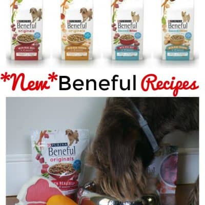 New Beneful Recipes (PLUS! Get a free sample!) #FriendsofBeneful