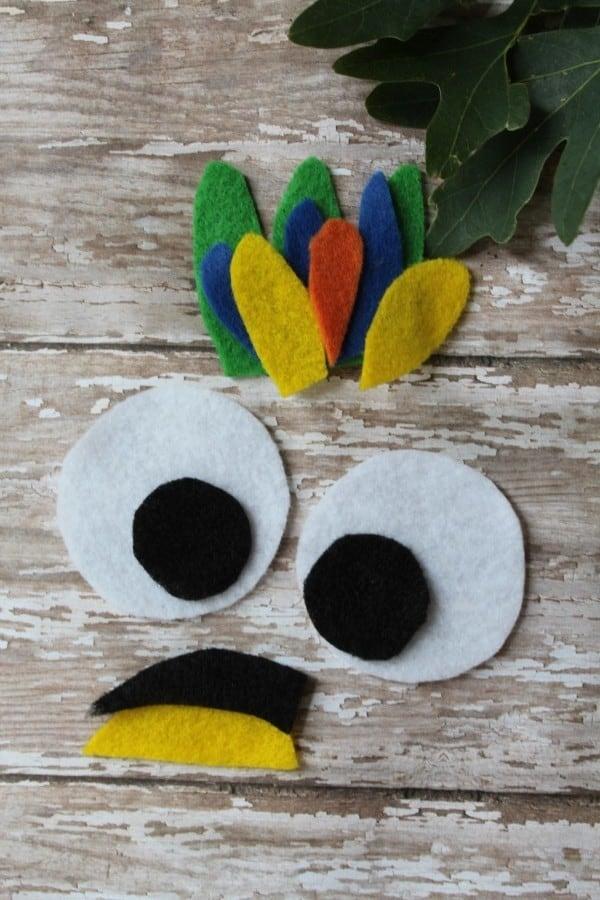 parrotpuppetcrafteyes