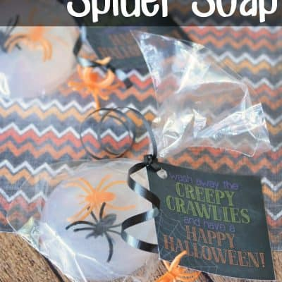 Creepy Crawlies Spider Soap  Non Candy Halloween Treat