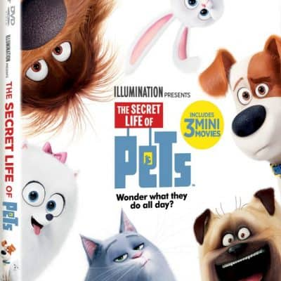 The Secret Life of Pets available for home viewing 11/22
