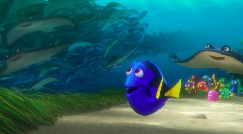 dory-screenshot