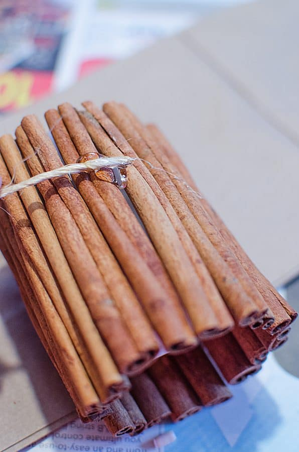 DIY Festive Cinnamon Candles Craft from This Mama Loves