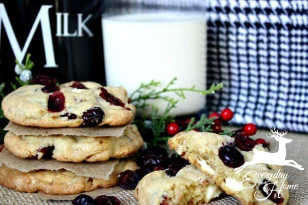 cranberry-pecan-white-chocolate-chunk-cookies-from-the-everyday-home ...