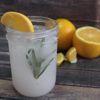 Citrus Rosemary Water- #ShakeitupwithVSL3