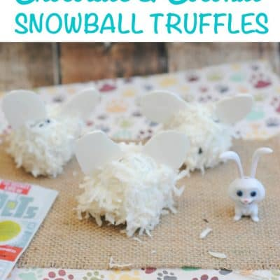 Chocolate & Coconut Snowball Truffles Recipe: #TheSecretLifeofPets Snowball Treat