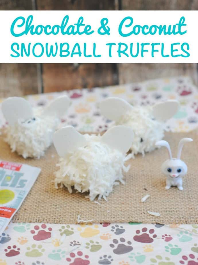 Chocolate and Coconut Snowball Truffles Recipe from This Mama Loves