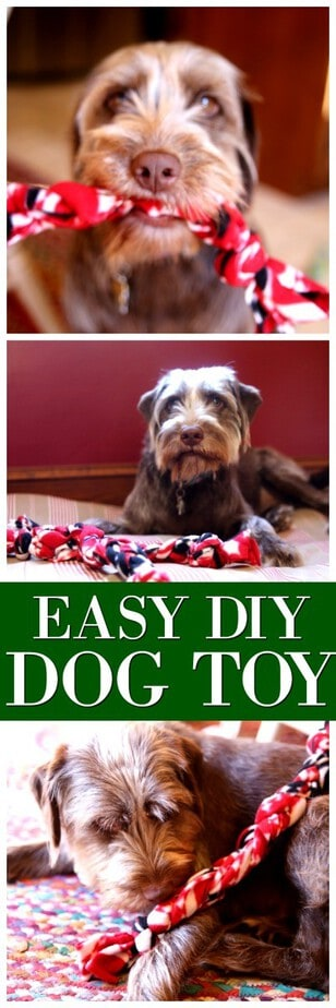 Check out this Super Simple DIY Dog Toy Tutorial kids can make too!  Easy DIY dog toy, diy tug toy for dogs