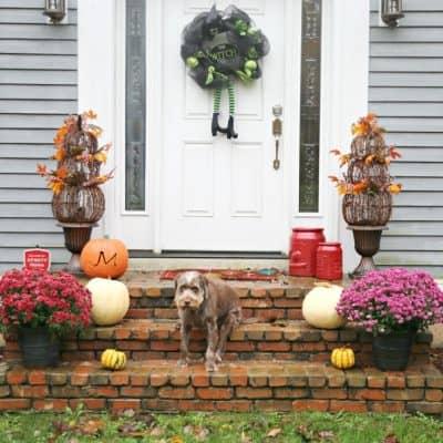 Festive Fall Front Door Idea