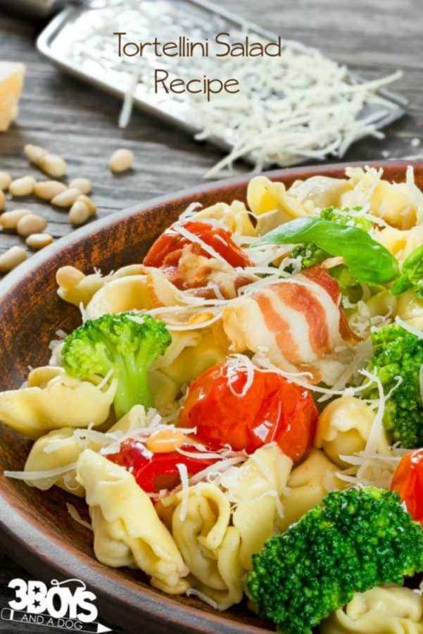 Tortellini-Salad-with-Dijon-Vinaigrette-from-3-Boys-and-a-Dog
