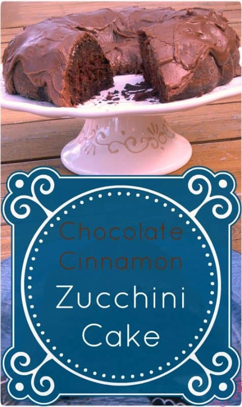 Chocolate Cinnamon Zucchini Cake from Clever Housewife