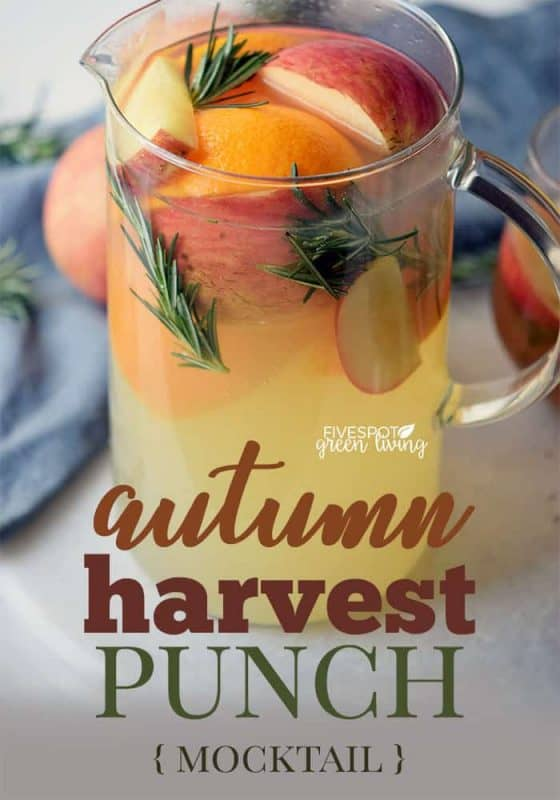 Autumn Harvest Punch Recipe from FiveSpot Green Living