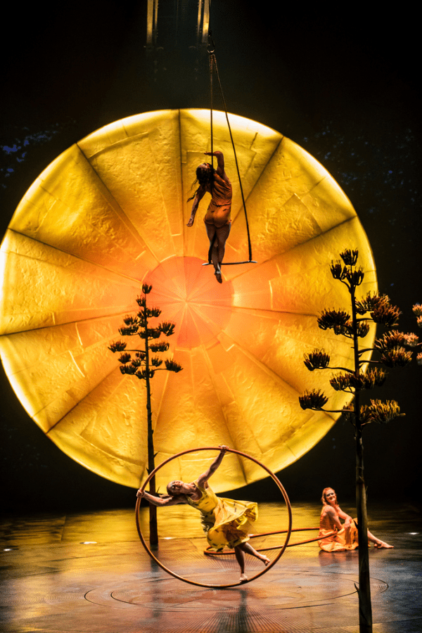 cirque luzia image still swings