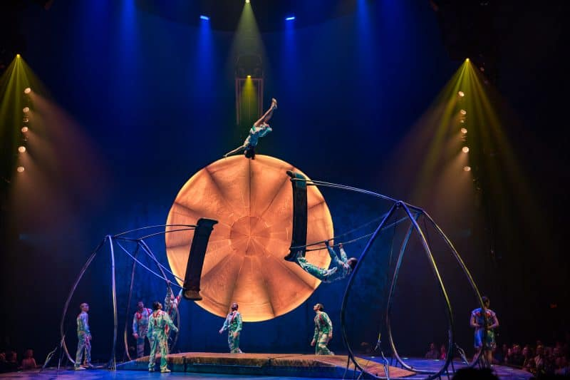 cirque luzia swing to swing