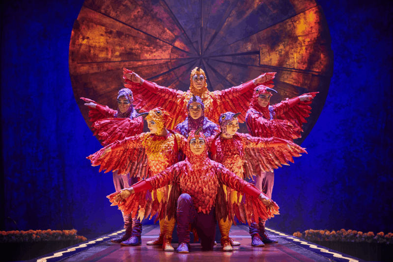 cirque luzia bird costumes