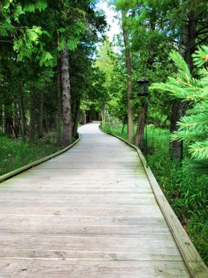 the ridges sanctuary fully accessible hiking walking trail wisconsin