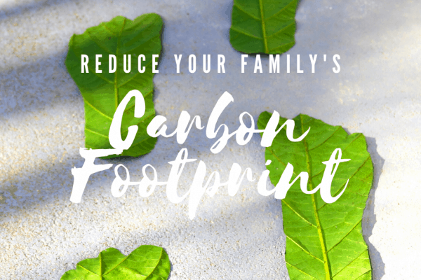 Simple Ways to Reduce Your Household's Carbon Footprint