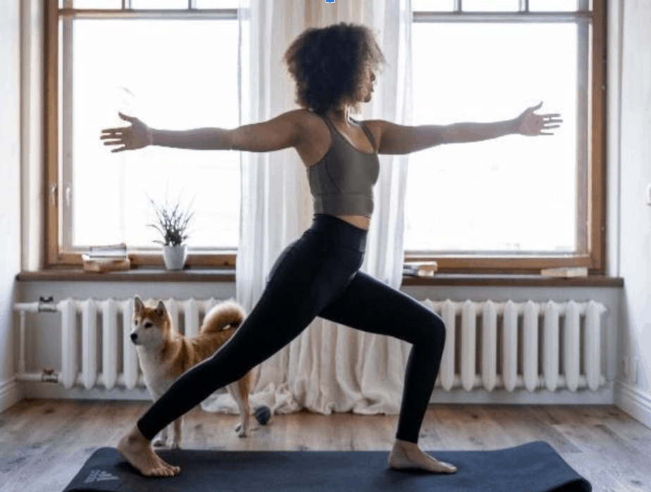 woman doing yoga by window on exercise mat with dog
