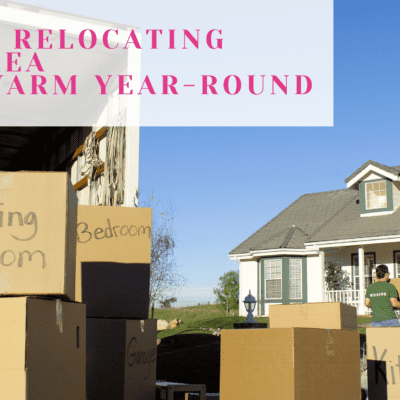 Tips for Relocating to an Area That's Warm Year-Round